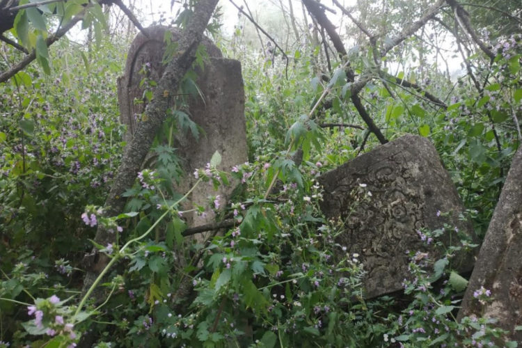 Unexpected cemetery discovery in Novoselytsia
