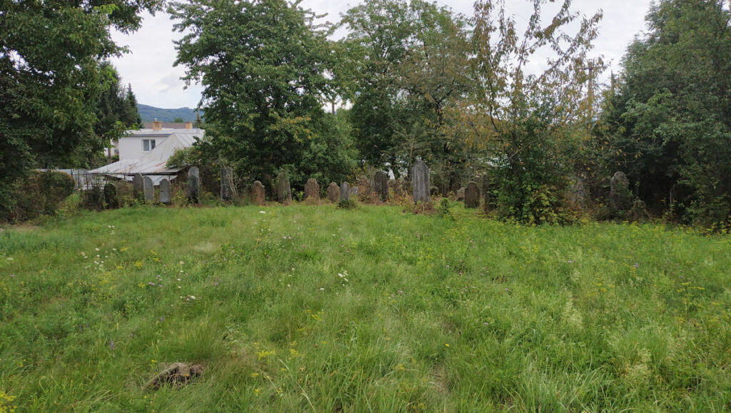 Bystre Jewish Cemetery Image